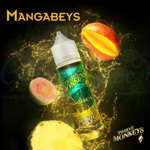 Mangabeys-Twelve-Monkeys.jpg