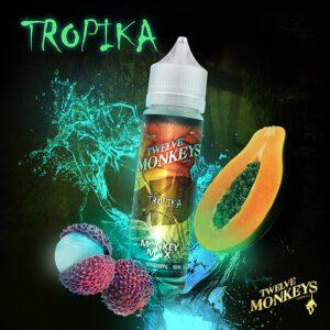 Tropika-Twelve-monkeys.jpg