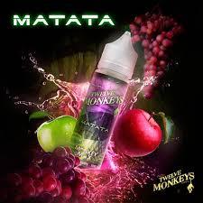 matata-twelve-monkeys.jpeg